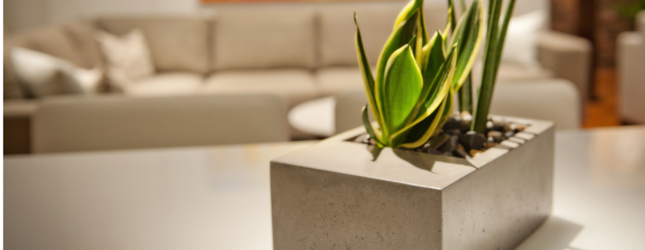 Modern Concrete Planters by KevinWood
