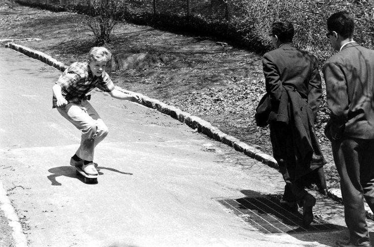 Life Skateboards 3