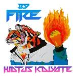 Hiatus Kaiyote - By Fire